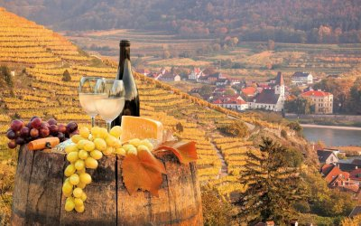 Wine Tasting Tour from Vienna to the Wachau Valley